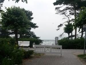 Im Hintergrund sieht man das Meer, das ich vom Balkon aus sehen kann. Es handelt sich dabei um die Ostsee vor Binz auf Rügen.