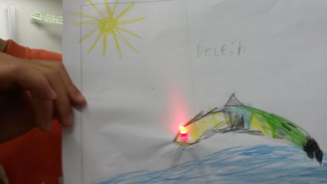 Ein Delfin mit leuchtendem Auge.