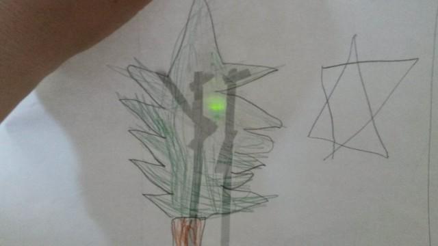 Eine von hinten grün beleuchtete Tanne.